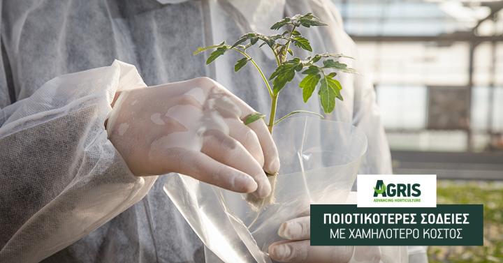 AGRIS – ΑΠΘ: Νέα ερευνητικά προγράμματα για ποιοτικότερες σοδειές